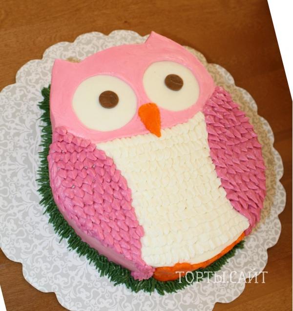 фото тортов в виде совы